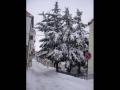 Nevicata 2012_12
